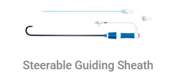 Steerable Guiding Sheath
